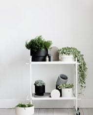 עציץ פודים לבן שטוח – TEMA