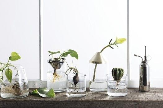 170203010LBLK 2 525x350 - Tema Blog - רעיונות לעיצוב הבית