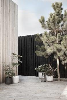 TEMA - עציצים ועיצוב הגינה